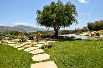 Camarillo Single Family Home For Sale: 7076 Los Coyotes Place