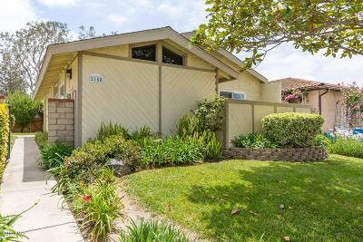 Camarillo Single Family Home For Sale: 2150 Chandler Street