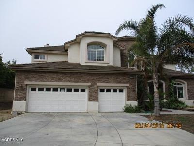 Camarillo Single Family Home For Sale: 5308 Plata Rosa Court