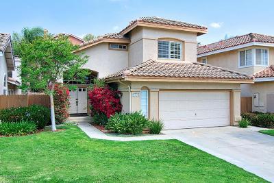 Camarillo Single Family Home For Sale: 5065 Ladera Vista Drive