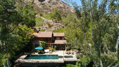 Agoura Hills Single Family Home For Sale: 31145 Lobo Vista Road