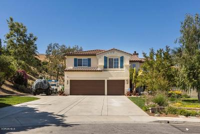 Simi Valley Single Family Home For Sale: 609 Summer Tree Court