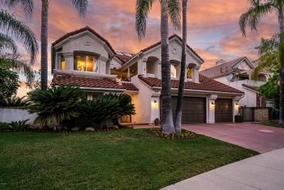 Agoura Hills Single Family Home For Sale: 5941 Dunegal Court