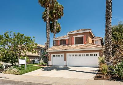 Simi Valley Single Family Home For Sale: 226 Cliffwood Drive