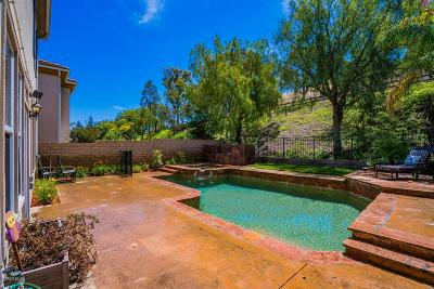 Simi Valley Single Family Home For Sale: 172 Parkside Drive