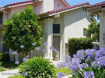 Oak Park Single Family Home For Sale: 983 Quarterhorse Lane