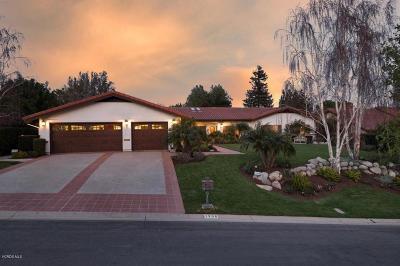 Westlake Village Single Family Home For Sale: 1306 White Dove Circle