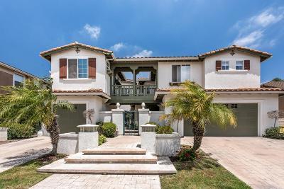 Camarillo Single Family Home For Sale: 2880 Avenida De Autlan