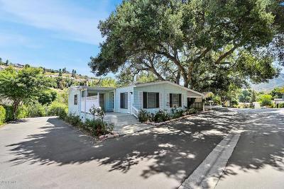 Westlake Village Single Family Home For Sale: 7 Sherwood Drive