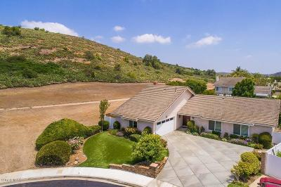 Thousand Oaks Single Family Home For Sale: 319 Odebolt Drive