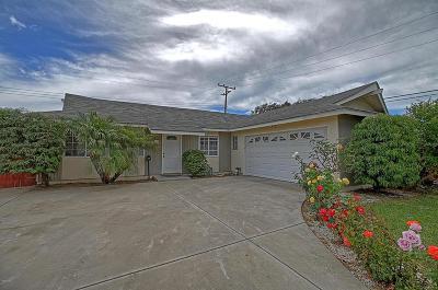 Camarillo Single Family Home For Sale: 422 Graham Avenue
