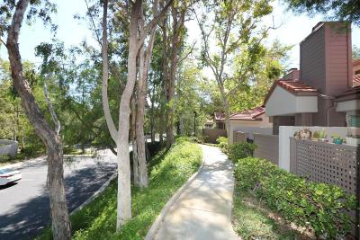 Westlake Village Condo/Townhouse For Sale: 126 Via Colinas