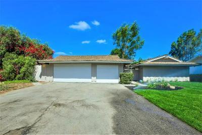 Camarillo Single Family Home For Sale: 1725 Ramona Drive