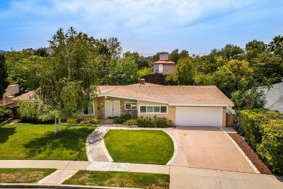 Woodland Hills Single Family Home For Sale: 4717 Almidor Avenue