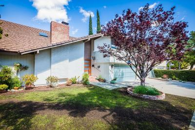 Westlake Village Single Family Home For Sale: 1076 Triunfo Canyon Road