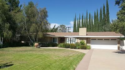 Thousand Oaks Single Family Home For Sale: 489 East Sidlee Street