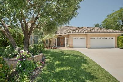 Thousand Oaks Single Family Home For Sale: 511 Meadowrun Street