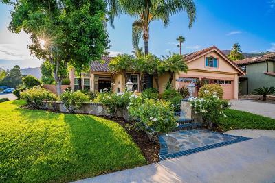 Thousand Oaks Single Family Home For Sale: 3033 Big Sky Drive