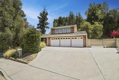 Woodland Hills Single Family Home For Sale: 4332 Topanga Canyon Boulevard