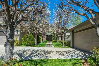 Westlake Village Single Family Home For Sale: 1724 Mesa Ridge Avenue