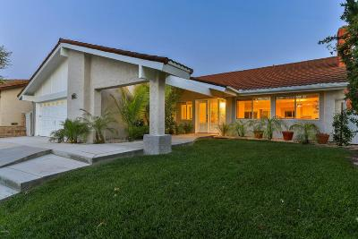 Agoura Hills Single Family Home For Sale: 28802 Colina Vista Street
