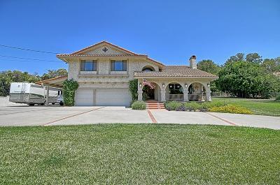 Camarillo Single Family Home For Sale: 101 La Patera Drive