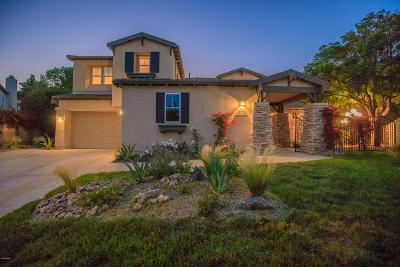 Ventura County Single Family Home For Sale: 979 Via Anita