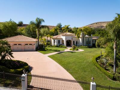 Agoura Hills Single Family Home For Sale: 29033 Silver Creek Road