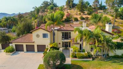 Camarillo Single Family Home For Sale: 6118 Armitos Drive