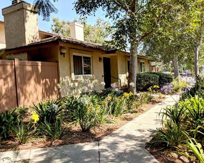 Ventura Condo/Townhouse For Sale: 587 Moses Lane