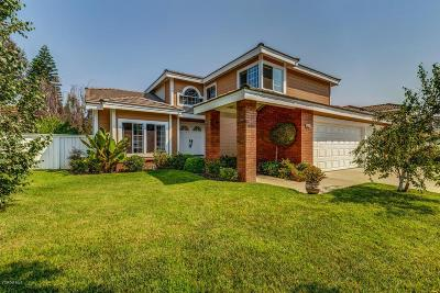 Camarillo Single Family Home For Sale: 843 Calle Portilla