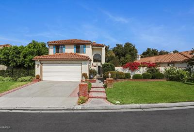 Simi Valley Single Family Home For Sale: 877 Congressional Road