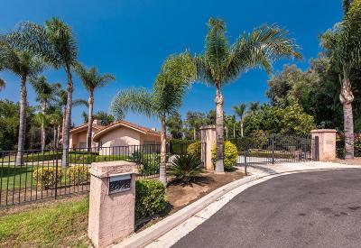 Camarillo Single Family Home For Sale: 2823 Las Posas Circle