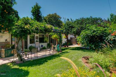 Ojai Single Family Home For Sale: 83 Crown Street
