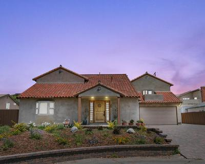 Camarillo Single Family Home For Sale: 84 Neish Street