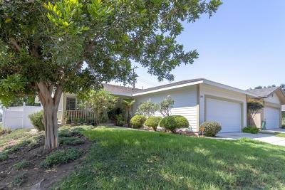 Camarillo Single Family Home For Sale: 2890 Walker Avenue