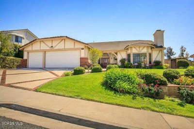 Agoura Hills Single Family Home For Sale: 5872 Woodglen Drive