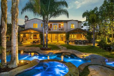 Thousand Oaks Single Family Home For Sale: 1251 Arroyo View Street