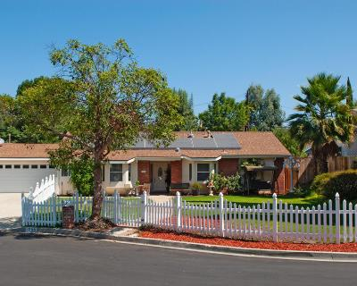Thousand Oaks Single Family Home For Sale: 1255 Calle Pimiento