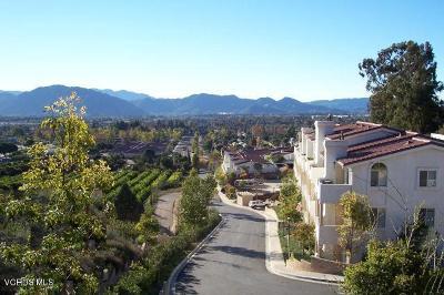 Camarillo Condo/Townhouse For Sale: 2533 Antonio Drive #106