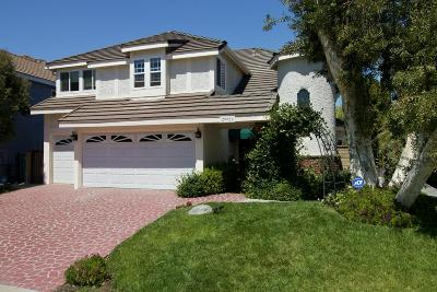 Agoura Hills Single Family Home For Sale: 29921 Trail Creek Drive