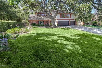 Westlake Village Single Family Home For Sale: 3352 Medicine Bow Court