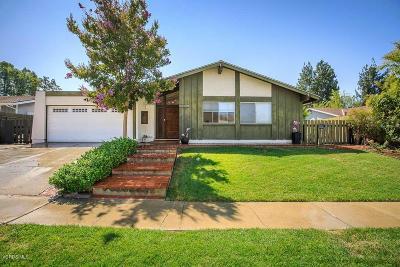 Oak Park Single Family Home For Sale: 6372 Pinion Street