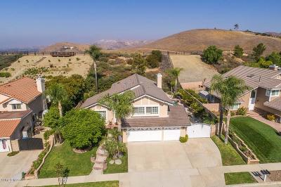Simi Valley Single Family Home For Sale: 3025 North Geronimo Avenue