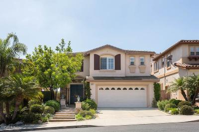 Thousand Oaks Single Family Home For Sale: 3011 Eagles Claw Avenue