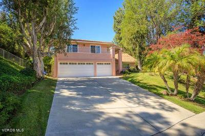 Woodland Hills Single Family Home For Sale: 4679 Tenango Drive