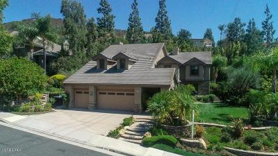 Agoura Hills Single Family Home For Sale: 6072 Lake Lindero Drive