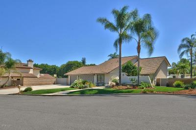 Simi Valley Single Family Home For Sale: 138 Stonebrook Street