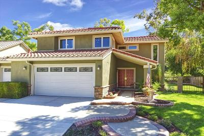 Simi Valley Single Family Home For Sale: 2934 Chippewa Avenue