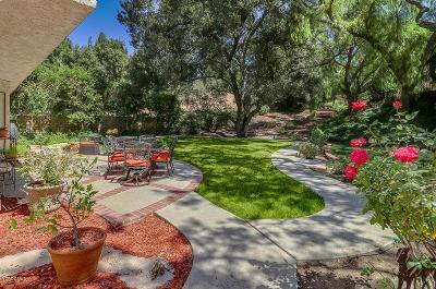 Thousand Oaks Single Family Home For Sale: 278 Fox Hills Drive